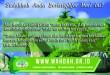 mujahid desain 4