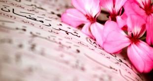 quran bunga pink