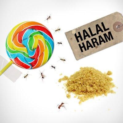 Kaidah Dan Kriteria Makanan Halal Dalam Islam 1 Wahdah Islamiyah
