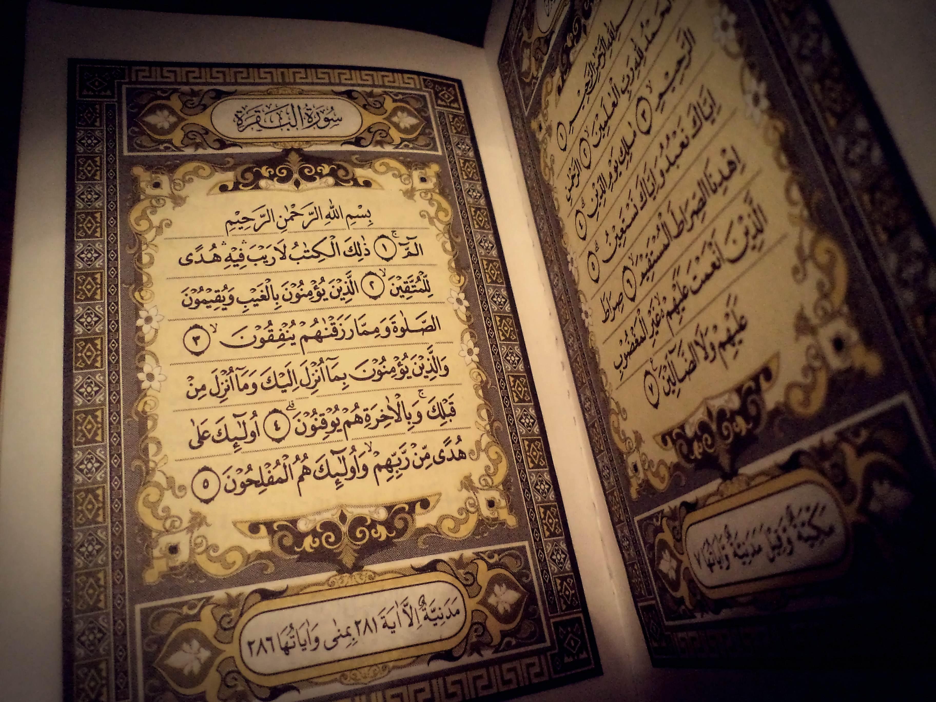 Al Quran Arsip Page 7 Of 11 Wahdah Islamiyah